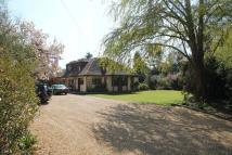 Detached property for sale in Rad Lane, Peaslake