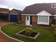 Bungalow in Brinkburn Close...