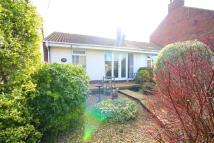 2 bedroom Semi-Detached Bungalow in Plawsworth Road...