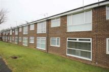 1 bedroom Apartment in Middleham Road...