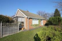 Cornwall Walk Detached Bungalow for sale
