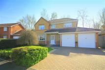4 bedroom Detached property in Woodlands, Lanchester...
