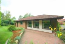 Bungalow for sale in Castle View...