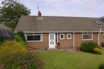 Winters Bank Semi-Detached Bungalow to rent