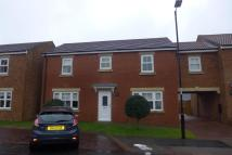 Link Detached House for sale in Elmfield, Hetton Le Hole