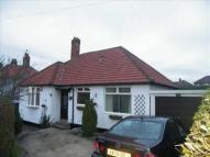 3 bed Detached Bungalow in Larch Avenue...