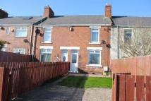 3 bed Terraced property to rent in Shiney Row
