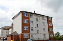 Flat to rent in Kirktonholme Gardens...