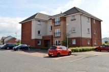 2 bed Flat to rent in Broad Cairn Court...