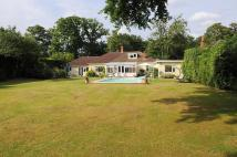 Detached Bungalow for sale in Fetcham