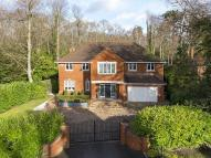 Detached home for sale in Cobham