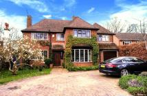 5 bedroom Detached property for sale in East Horsley