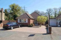 3 bed Bungalow in New Haw