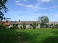 Detached Bungalow in Dairy Cottage...