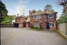 Coombe Detached property for sale