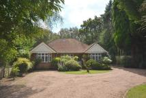 4 bedroom Detached Bungalow in Ottershaw