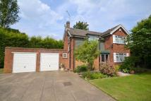 4 bed Detached house in Chertsey