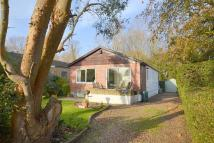 2 bed Detached Bungalow for sale in Shepperton