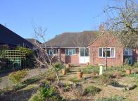 Semi-Detached Bungalow in Shepperton