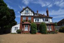 Shepperton house for sale