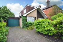 Bungalow for sale in Walton on Thames