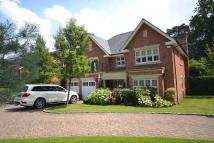 6 bedroom Detached house for sale in Woking