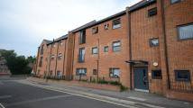 Flat to rent in Lavinia Court