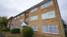 2 bed Apartment in Sylvia Close