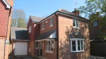 3 bedroom Detached house in Chineham, Basingstoke