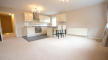 1 bedroom Apartment to rent in Elderberry Bank