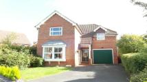 3 bed Detached house to rent in Redwing Road, Basingstoke