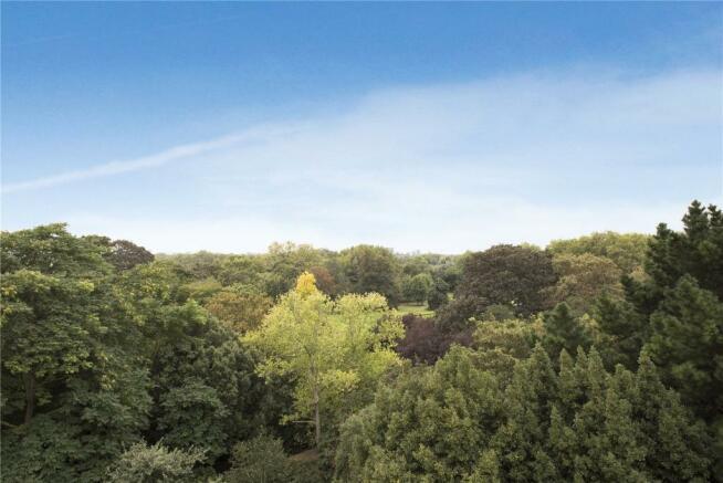 View Over Hurlingham