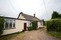 1 bedroom Flat in Glynn House...