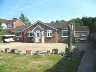 4 bed Detached Bungalow in Woodfield Road, Ledbury...