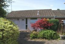 Semi-Detached Bungalow for sale in Queens Court, Ledbury