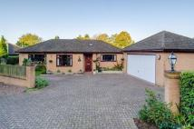 4 bedroom Detached Bungalow for sale in Old Church Road, Colwall,