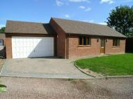 3 bed Detached Bungalow for sale in Link Elm Place...