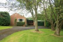 3 bedroom Detached Bungalow in Cradley, Nr Malvern