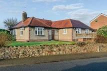 Detached Bungalow for sale in Lower Howsell Road...