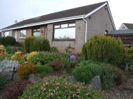 Overton Avenue Semi-Detached Bungalow to rent