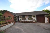 3 bed Bungalow in Latchley, Gunnislake...
