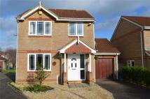 Detached property in Willow Walk, Honiton...