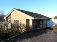 Bungalow for sale in Coombe Close, Honiton...