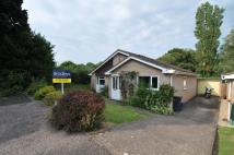 3 bed Bungalow for sale in Marker Way, Honiton...