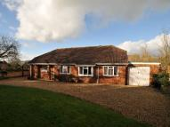Bungalow for sale in Beggars Lane, Honiton...
