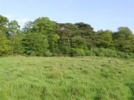 Exeter Land for sale
