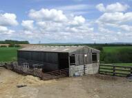 Chittlehampton Land for sale