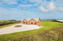 Bungalow for sale in Higher Clovelly...