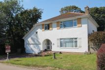 Detached property for sale in Pinewoods, Bexhill-On-Sea