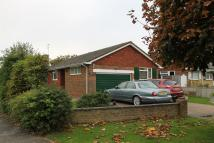 2 bed Detached house for sale in Maple Walk...